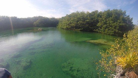 Cenote Media Luna